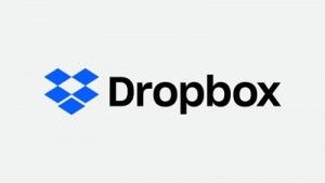 Dropbox License New – Pro Rate Subscription to June 1st 2022